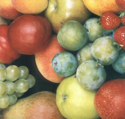 Piante da frutto vivai barberis for Vivai piante da frutto